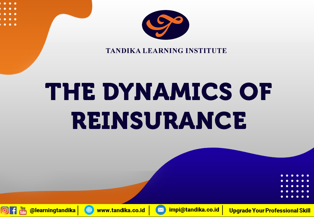 The Dynamics of Reinsurance